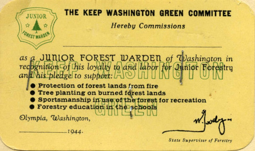 Washington Junior Forest Wardens card