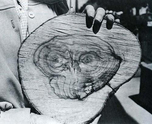 ET the extra-terrestrial tree