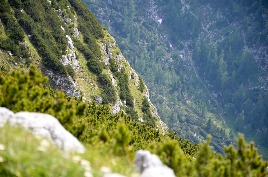 mountain side with green vegetation and grey rock surfaces