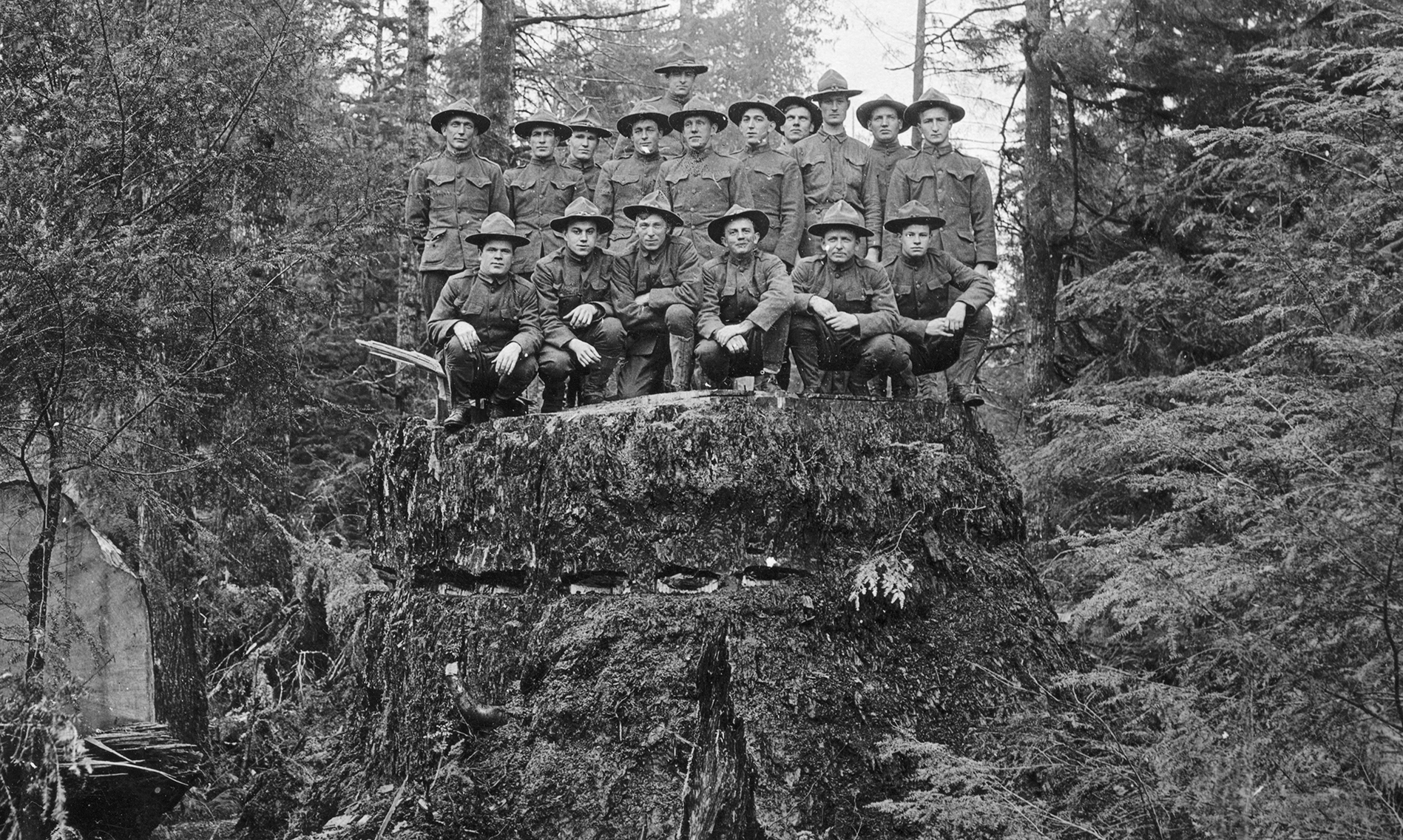 Soldiers on stump_reduced