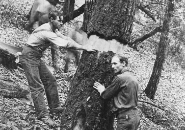 black and white photo of two men peeling the bark off a tree