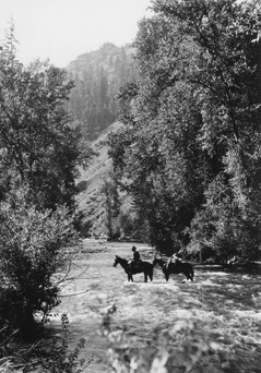 Rangers on horseback crossing Wenaha River, Oregon, 1921.