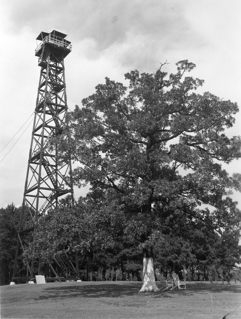 Mosley Hill lookout tower, Kisatchie National Forest, Louisiana.