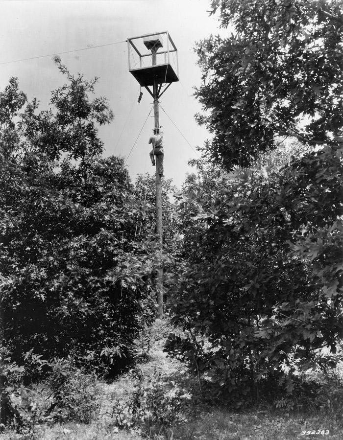 Blackjack Knob pole tower, Clark National Forest, Missouri.