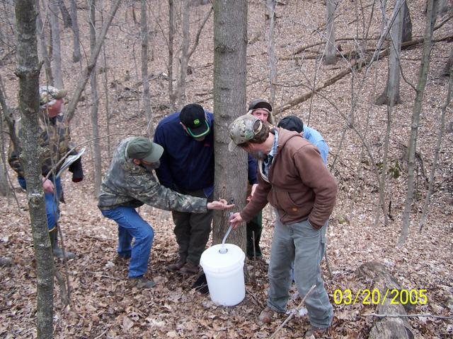 Private Forestland Tour: Maple Syrup Days, March 20, 2005, located on Jack Wohlstadter's Tree Farm in Illinois.  (Photo courtesy of Jack Wohlstader)
