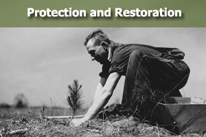 Protection and Restoration