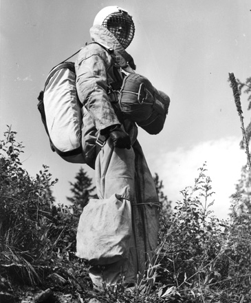 Bill Carver, foreman in smokejumper unit at Missoula, Montana, 1954.