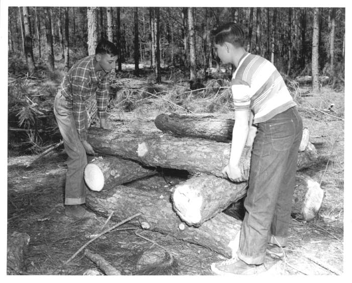 a57e021e76 Caption: Delmar Tyree (right) demonstrates tree measurement to Jack Bolls.  (Arkansas) Photographer: [unknown] Use Restrictions: Permission from the  Forest ...