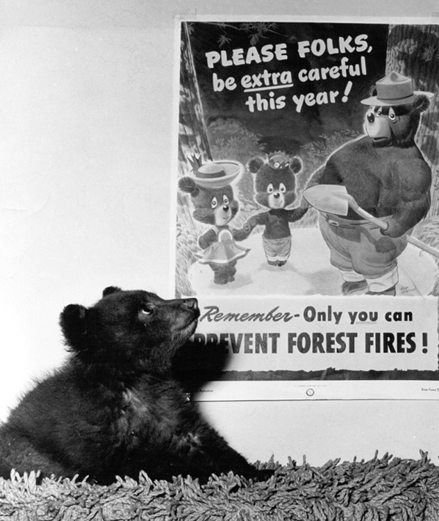 The 'real' Smokey Bear with poster.