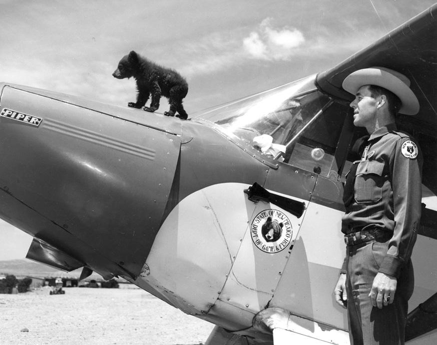 The 'real' Smokey Bear standing on hood of plane.