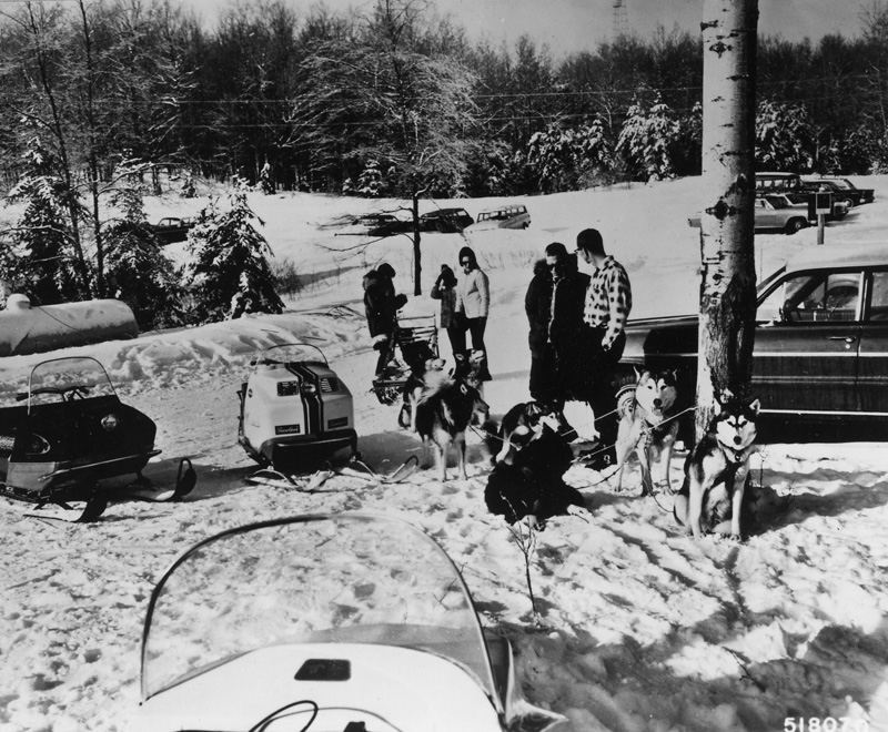 A group of snowmobilers check out a dog team.
