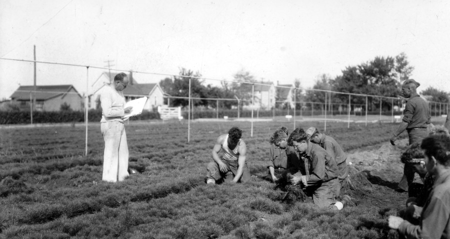 Joseph Sparks, official artist for Huron National Forest, sketching CCC boys at Beal Nursery, 1934.