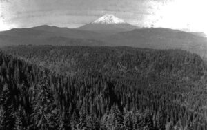 The view of Mount St. Helens overlooking Lewis River, Eagle Butte, and Pine Creek drainage. Taken in 1918.