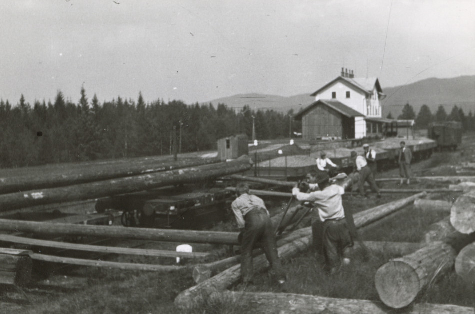 [Lumberyard, Europe.] [Photo from the Clarence Forsling Papers. Photos document Forsling's 1935 trip to Europe funded by the Carl Schurz Memorial Foundation and the Oberlaender Trust.]