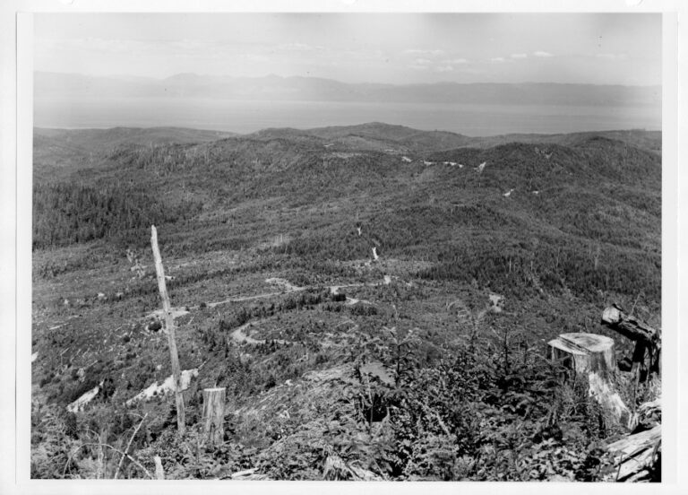 View to the Northeast from Sooes Peak, across cut-ver lands of the Makah Indian Reservation and the Clallum Bay Tree Farm of the Crown Zellerbach Corporation