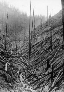 1910fires