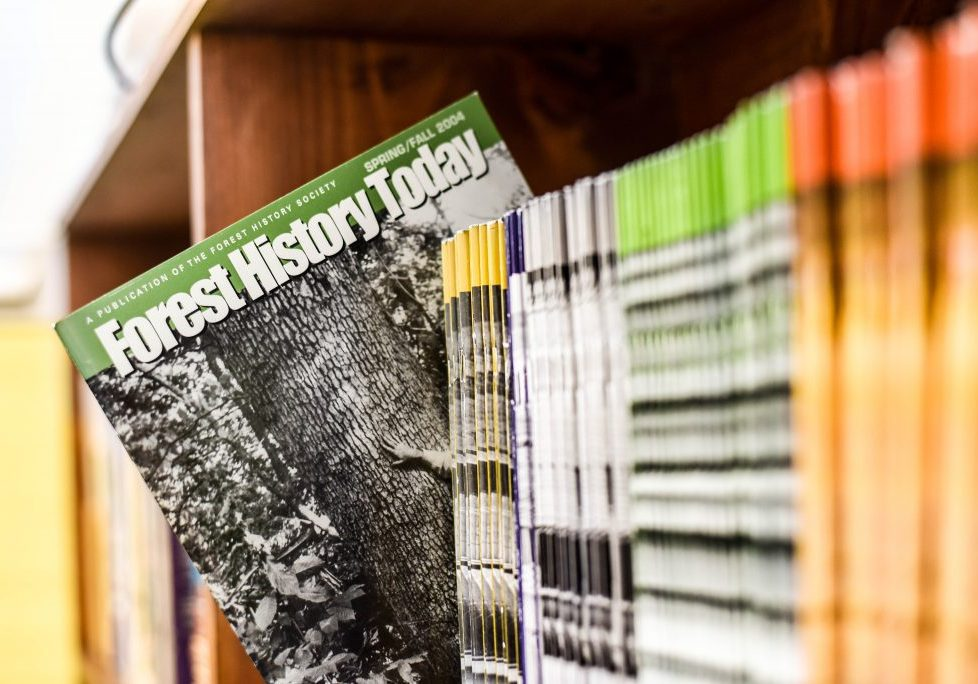 shelf of Forest History Today magazines
