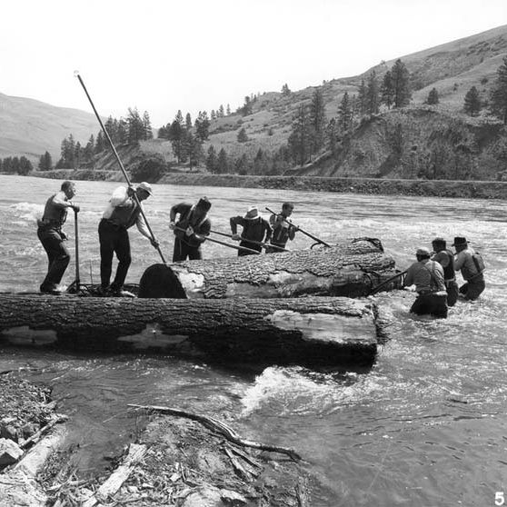 Log drive on Clearwater River, Idaho, 1961.